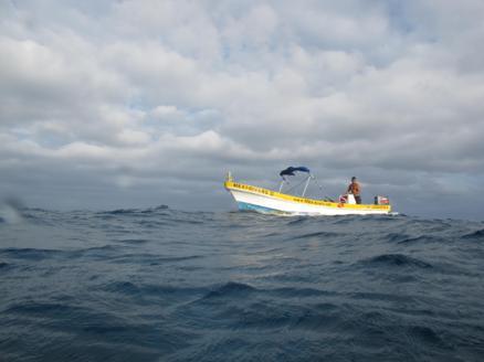 scuba-diving-dive-tulum-tour-reef-photos6