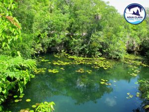 tulum tour 5 cenotes tankah tour - we visit 5 cenotes in one day